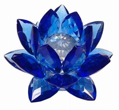 Crystal Flower Amlong Lotus Sapphire Walmart