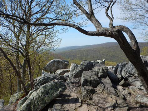 scenic vistas catoctin mountain park  national park