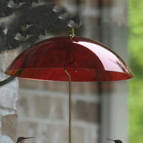 how to make a rain guard for bird feeder shop birds choice plastic bird feeder weather guard at lowes