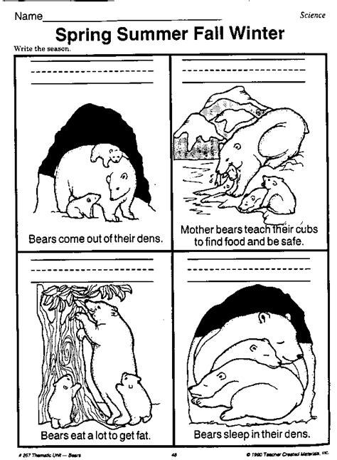 hibernating worksheet beary bears teachers activities teaching seasons kindergarten