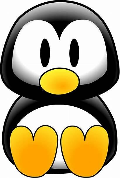 Penguin Cartoon Clipart Drawing Clip Cliparts Clker