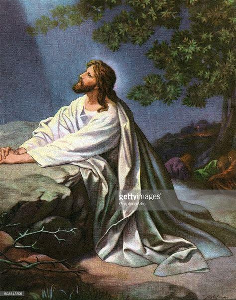 jesus praying in the garden garden of gethsemane pictures olive harvest at garden of