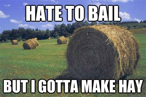 Hay Meme - hate to bail but i gotta make hay bail of hay meme