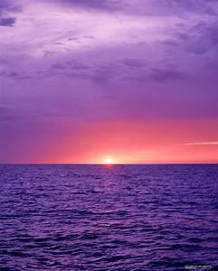 Dry Tortugas Sunrise by Ellen Cuylaerts - Photo 12804829 ...