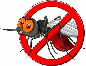 Insektenschutztür Zum Schieben : frische luft ohne insekten und pollen fensternorm ~ Orissabook.com Haus und Dekorationen
