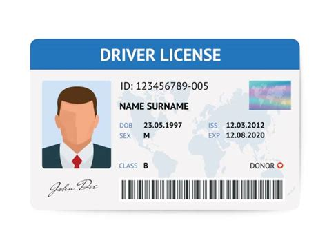 drivers license card illustrations royalty  vector
