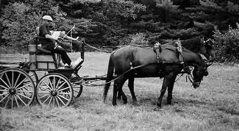granite state carriage association carriage and