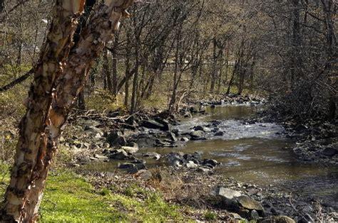 Volunteers Cleaning Leakin Park Find Body