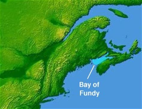 Bay of Fundy - Wikipedia