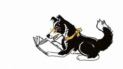 Animation Questions Any Collie Border Studio Clipartmag
