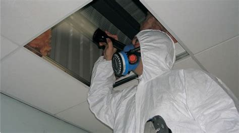 asbestos register nsw consultancy services sydney