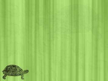 tortoise  powerpoint templates