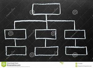 Blank Organization Chart Drawn On A Blackboard  Stock