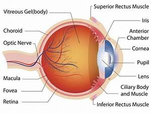 Dealing With Cataracts