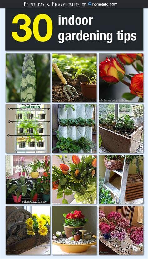 1000 ideas about indoor gardening supplies on