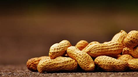 Peanut Packets Possibly Prevent Peanut Allergiesas Does