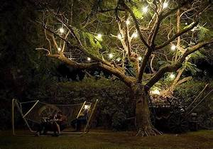 outdoor tree lights let there be light pinterest With outdoor lights for oak trees