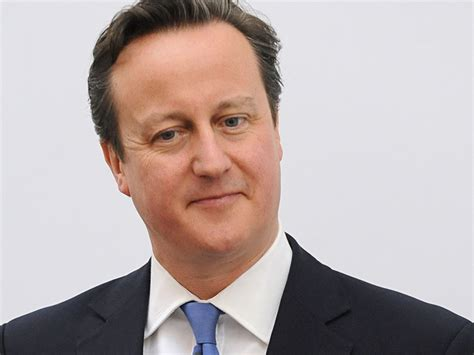 Book Claims British PM David Cameron Put His Penis In A ...