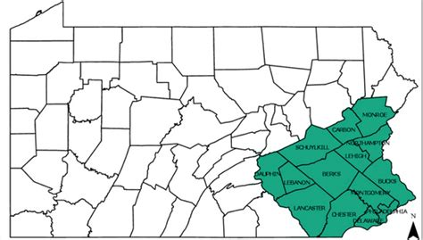 Spotted Laternfly Quarantine Zone Expanding Into Central Pa
