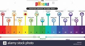 The Ph Scale Universal Indicator Ph Color Chart Diagram Acidic Stock Vector Art  U0026 Illustration