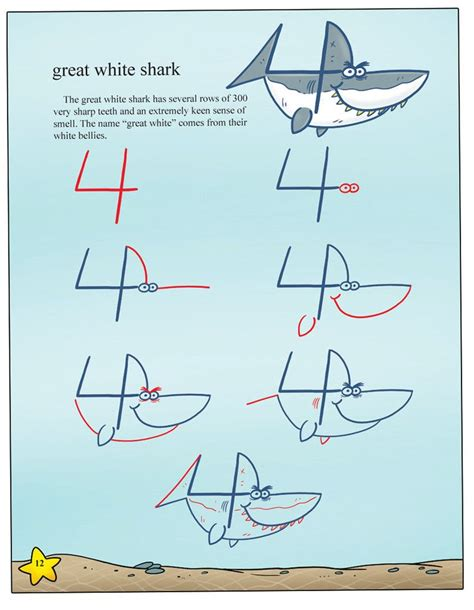 drawing sea animals  numbers shop harptoons draw