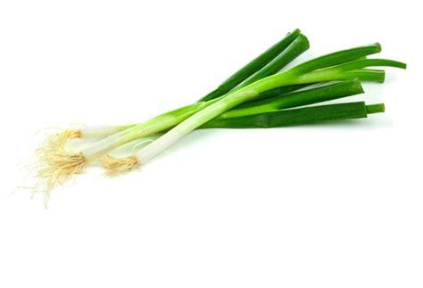 cuisiner de la courge recettes pour les légumes information conseils et idées