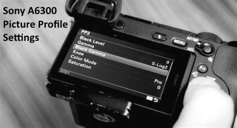 sony  picture profile settings    set