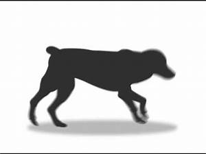Running Dog Animation - YouTube
