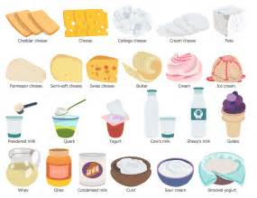 Examples of Dairy Food Group