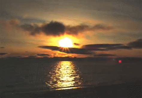 sunrise gifs find share giphy