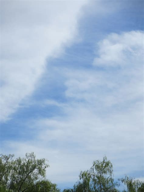 homeschool voyager cloud viewing  classification