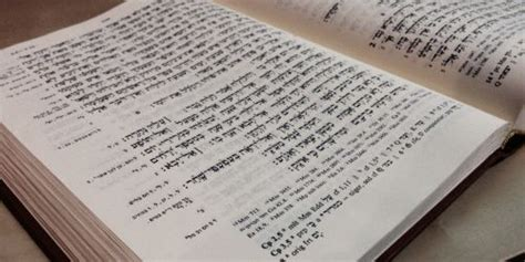 hebrew frequency vocabulary   occurrences ginoskos