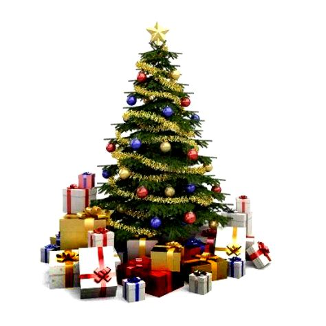 christmas tree collections photo albums fabulous homes