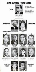 Lucchese Family Enemigos Públicos Mafia Historia De Ee Uu