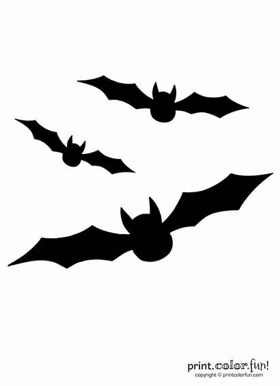 Coloring Pages Bats Carving Pumpkin Stencil Flying