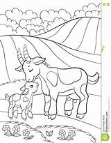 Goat Coloring Pages Mountain Funny Adorable Printable Getdrawings Getcolorings sketch template