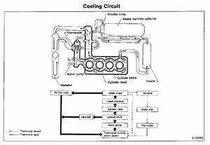 Help - Ka24de Coolant Leaked