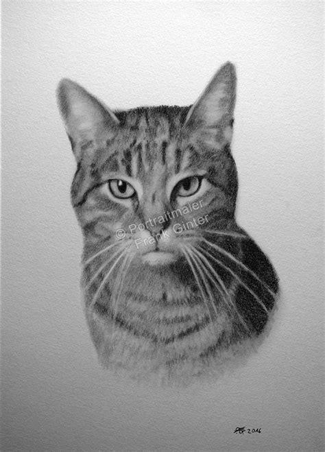 malen mit bleistift tierportraits nach fotovorlage tiermaler tierzeichner