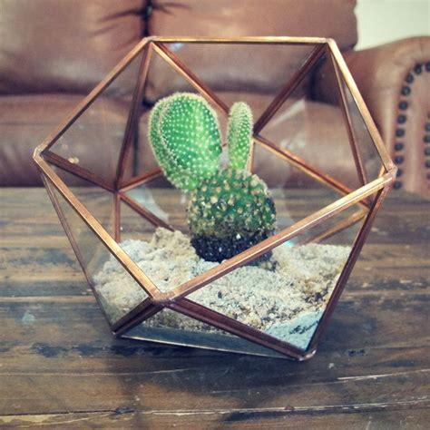 rose gold glass plant terrarium large geometric