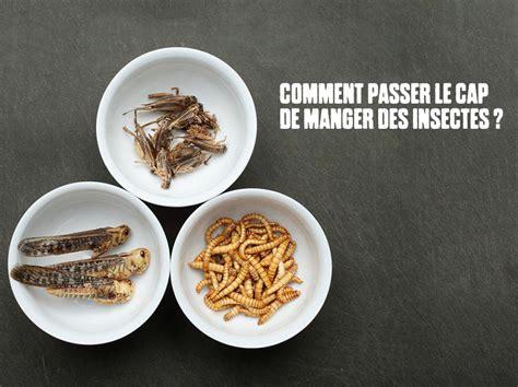 plat simple a cuisiner comment manger des insectes 8 idées pour vous y mettre