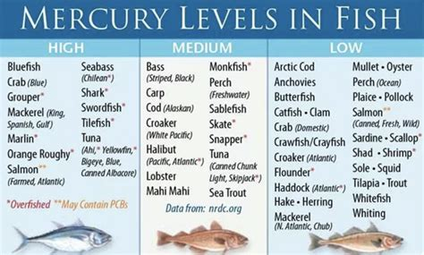 mercury fish seafood levels pregnancy pregnant foods avoid clickbait reporters reels readers pr dry leaves docs according brain should healthnewsreview