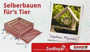Großes Vogelhaus Selber Bauen : vogelhaus selber bauen so funktioniert es zooroyal magazin ~ Orissabook.com Haus und Dekorationen