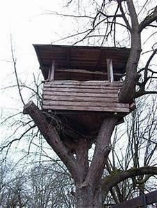 Baumhaus Ohne Baum : baumhaus stupidedia ~ Lizthompson.info Haus und Dekorationen