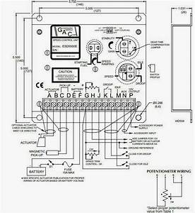 Diagram  Dse 7320 Wiring Diagram Full Version Hd Quality