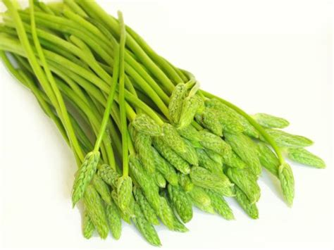 cuisiner des asperges sauvages asperge aliments lexique