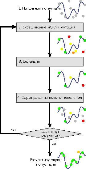 File:Schema simple algorithme genetique ru png Wikimedia