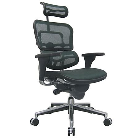 raynor ergohuman high back mesh chair 52 h x 26 12 w