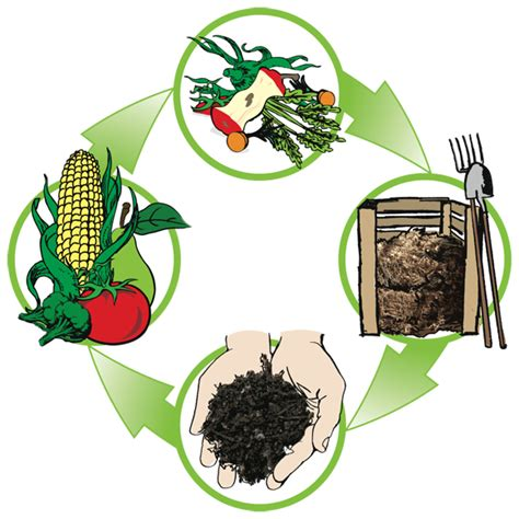 compost cuisine composting with kitchen scraps a primer the perennial post