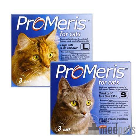 Flohmittel Katze Tierarzt