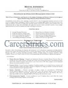 curriculum vitae templates pdf download exle of cv information technology